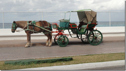 common mode of transportation in Cozumel!