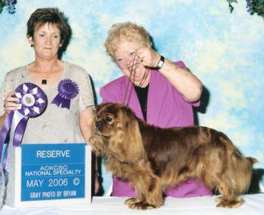 Marque winning Reserve Dog at our National